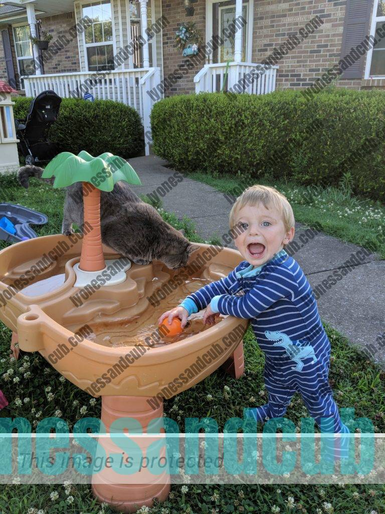 laughing toddler and cat playing in Step2 Dino Dig Sand & Water Table