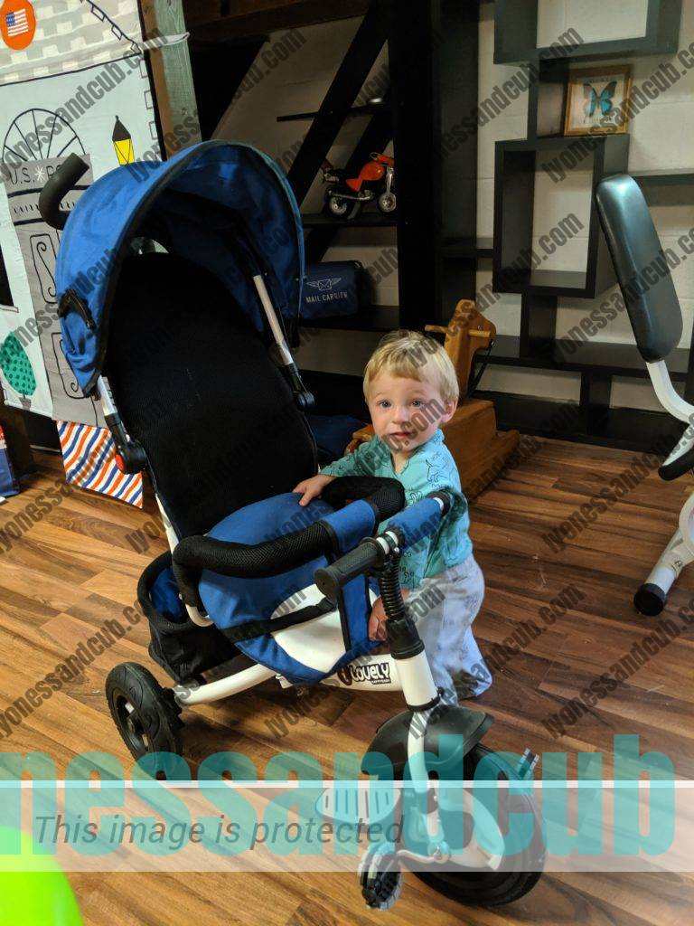 toddler with his first push tricycle