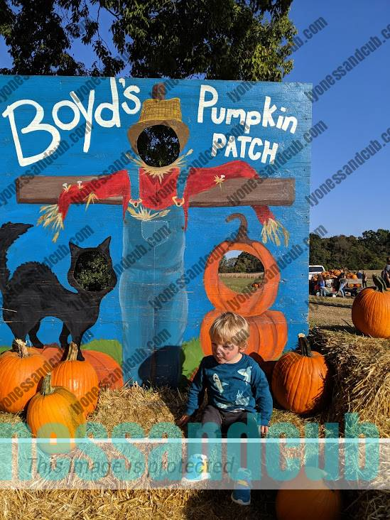 toddler sitting on hay stack at pumpkin patch
