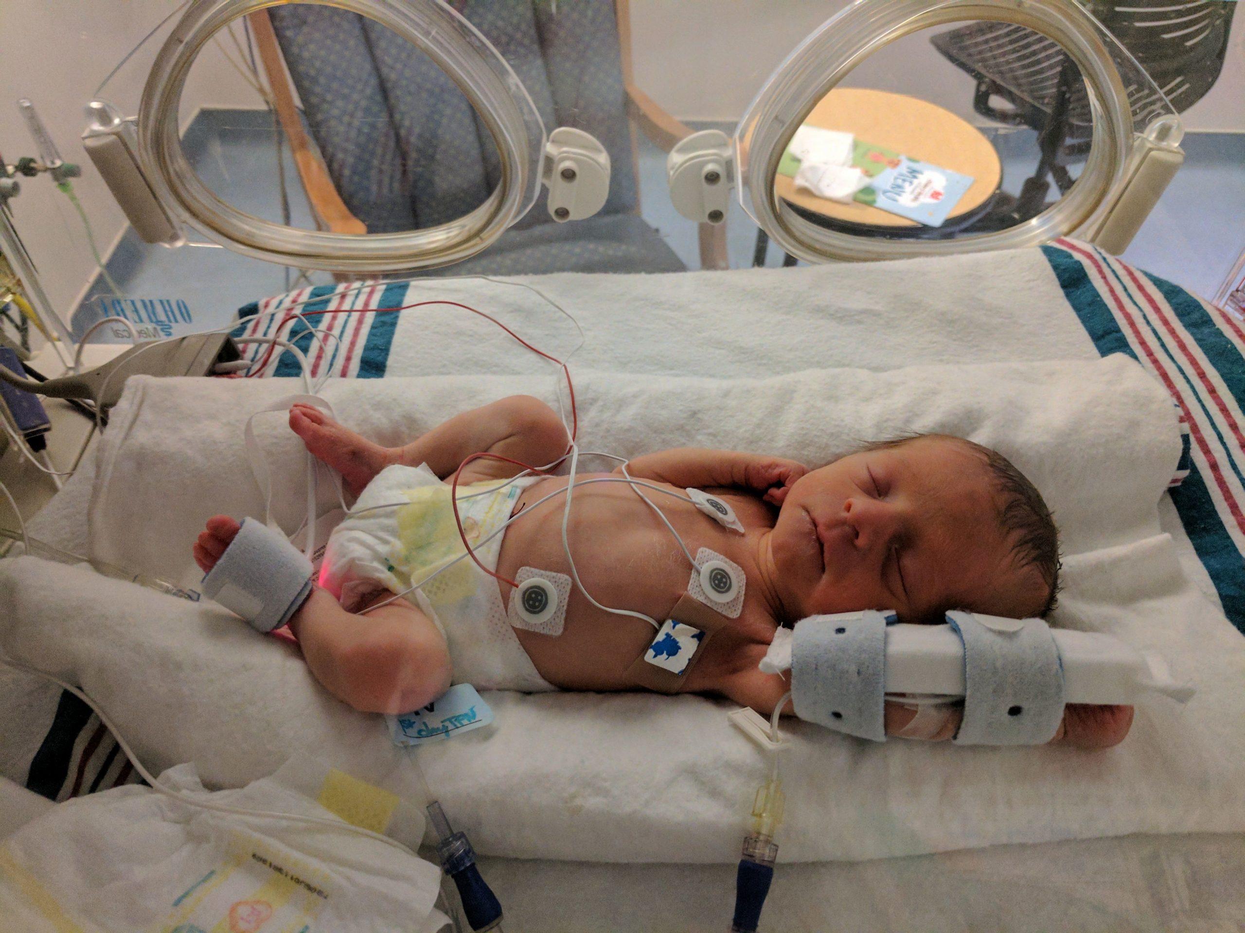 31012018_incubator